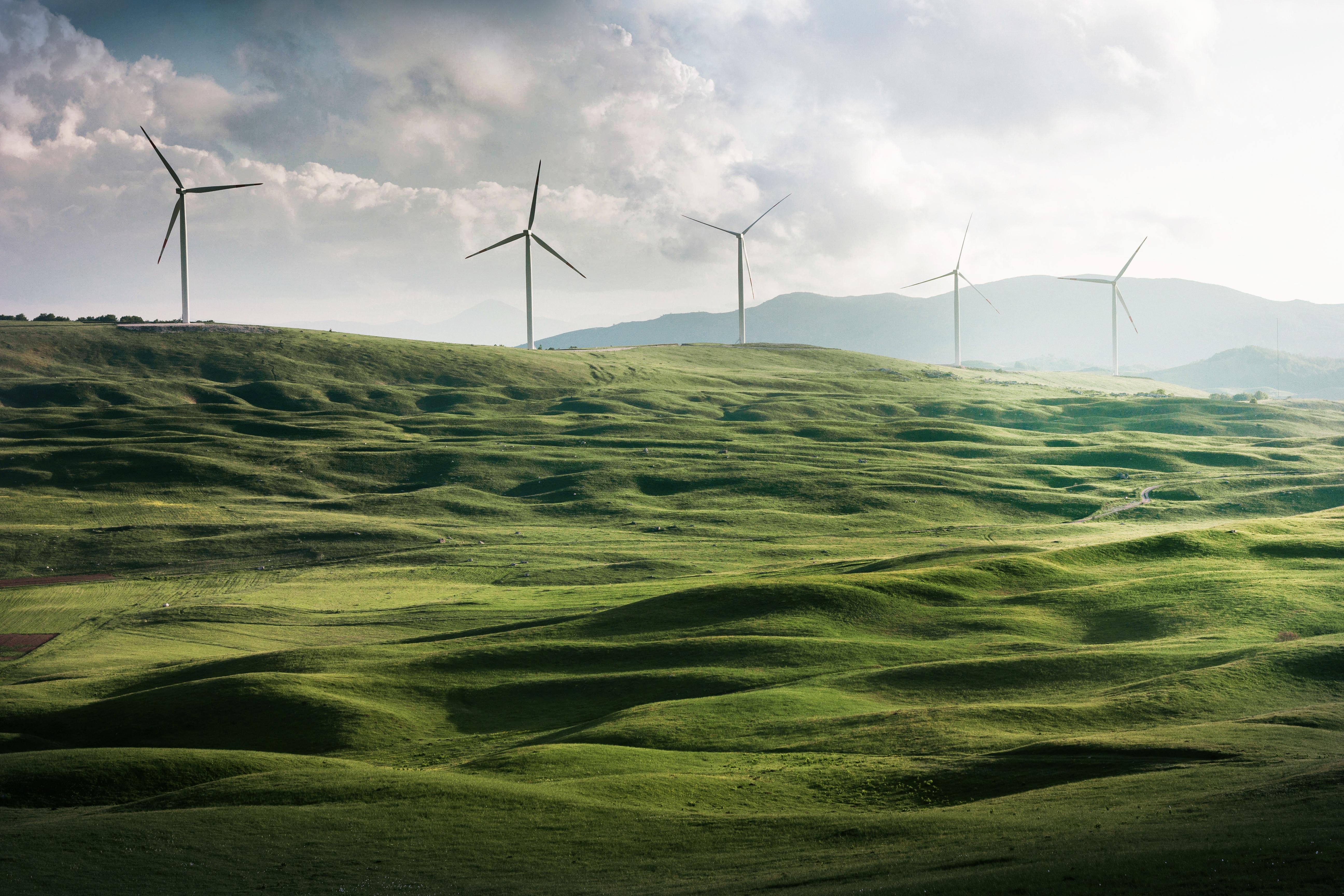 Paperkite bezieht jetzt Ökostrom